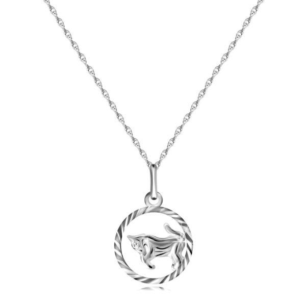 Náhrdelník ze stříbra 925 – spirálovitý řetízek