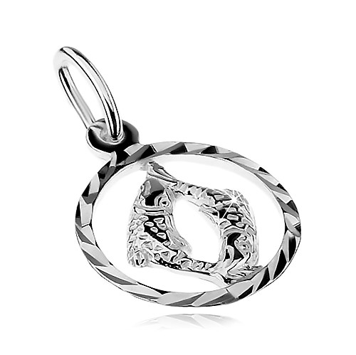 Přívěsek ze stříbra 925 - kruh se znamením zvěrokruhu - RYBY